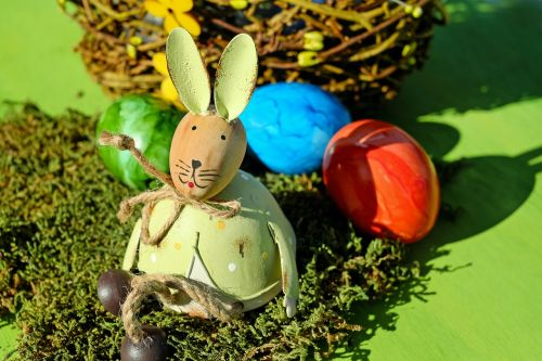 hare easter bunny easter