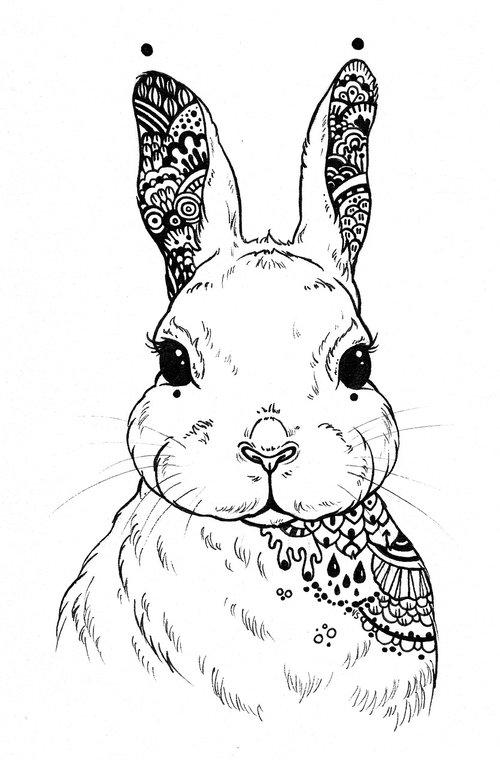 hare  mandala  mandala illustration