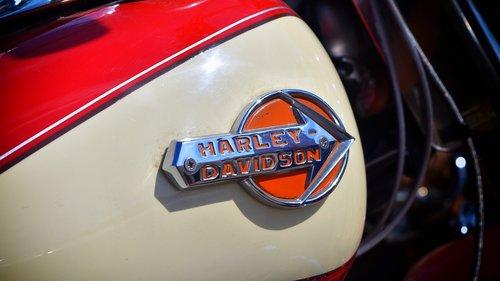 harley davidson  bike  motorcycle