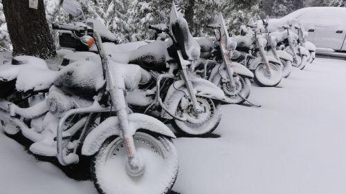harley davidson motorcycle snow