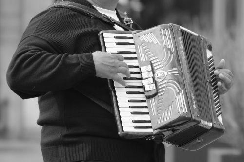 harmonica music instrument