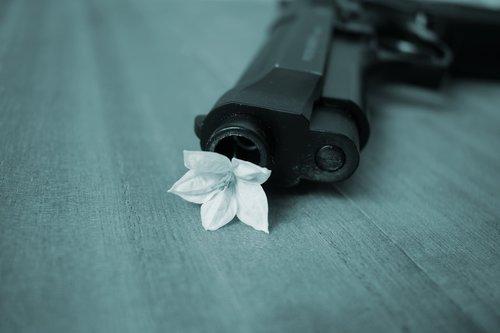 harmony  peace  pistol