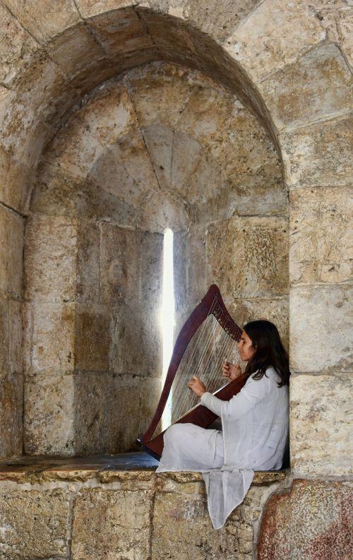 harp music musician
