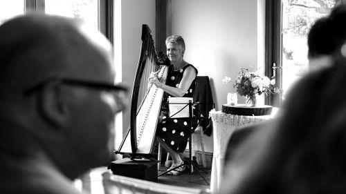 harp black and white instrument