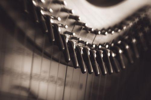 harp music musical
