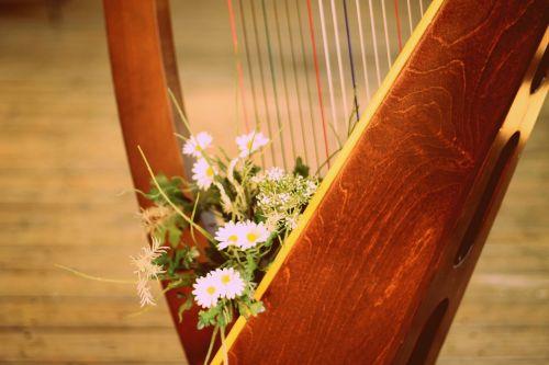 harp harp with flowers harp strings