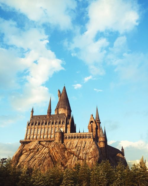 harry potter wizard hogwarts