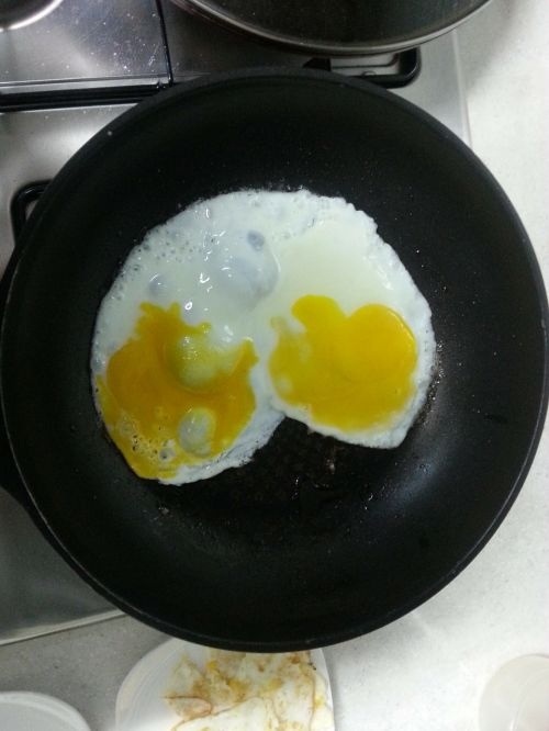 hart eggs fry