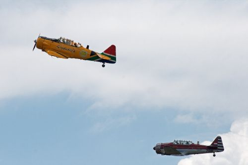 Harvards Flying In A Display