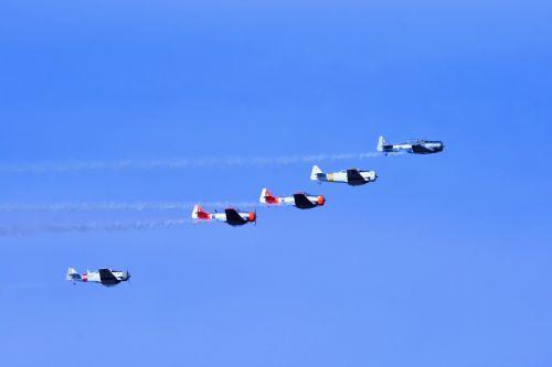 Harvards In Flight