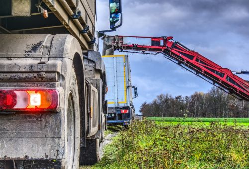 harvest sugar beet truck