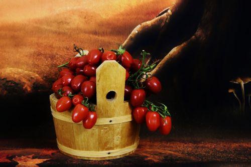 harvest tomatoes wooden bucket vegetables