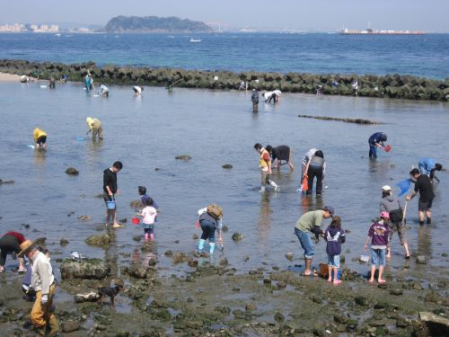 hashirimizu beach ebb spring tide