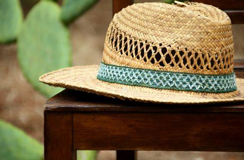 hat straw hat headwear