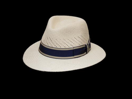 hat  coneflower  sun protection