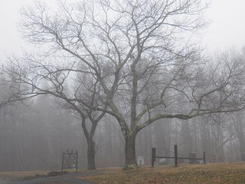 Haunted Graveyard 1