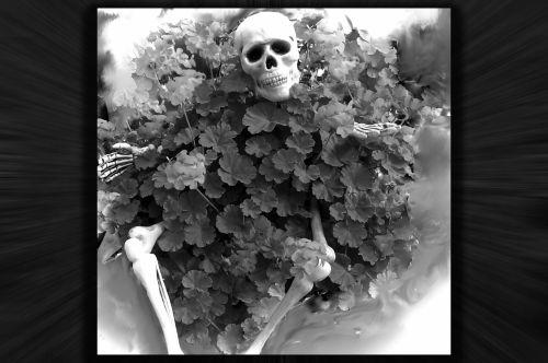 Haunted Planter