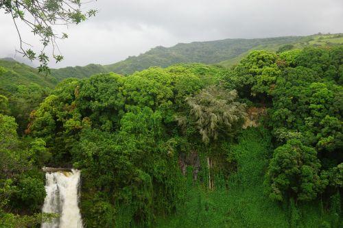 hawaii maui waterfall