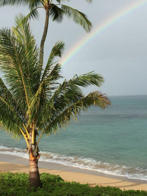 hawaii maui rainbow