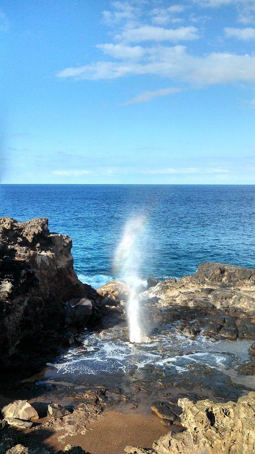 hawaii maui blow hole