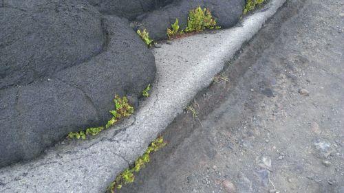 hawaii island of hawaii lava