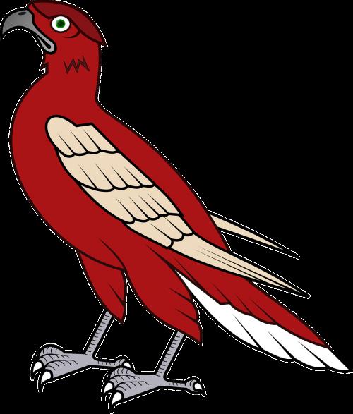vanagas,paukštis,falcon,paukštis,medžiotojas,plėšrūnas,nemokama vektorinė grafika