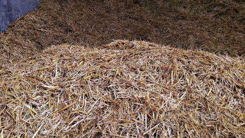 hay farm bedding
