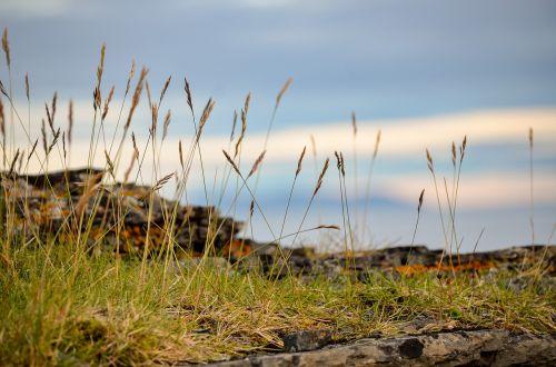 hay sky landscape