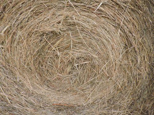 hay bale farm closeup
