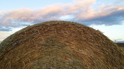 hay bale rural country