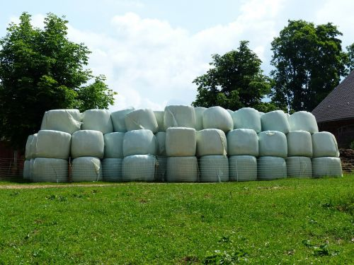 hay bales straw bales agriculture