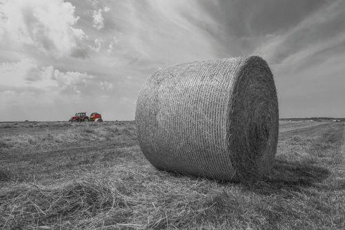 hay bales tractor harvest