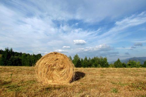 hay harvest prom sky