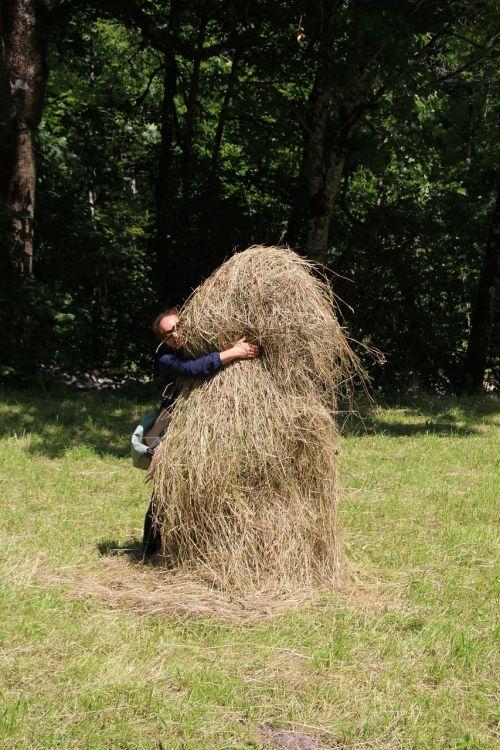 haystack hay feed