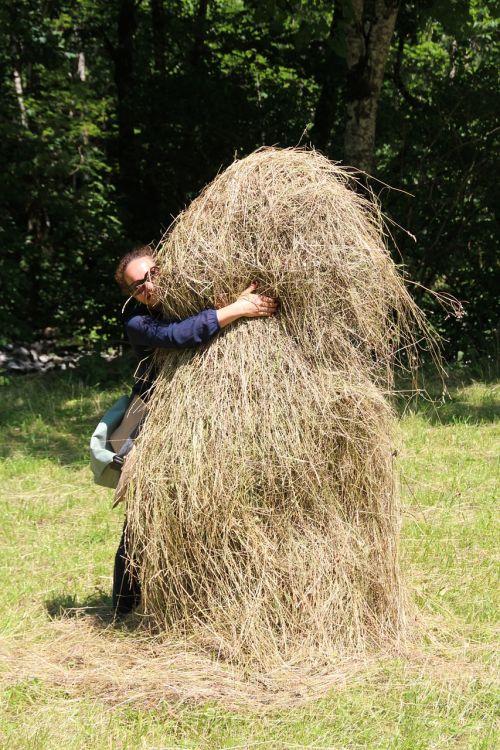 haystack hide hay