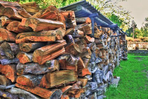 hdr nature wood