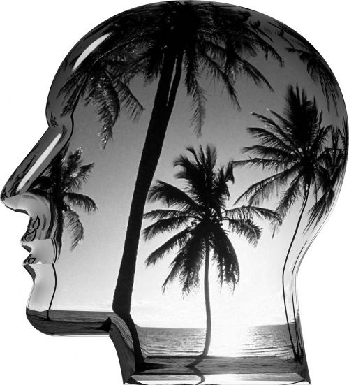 head dream thought