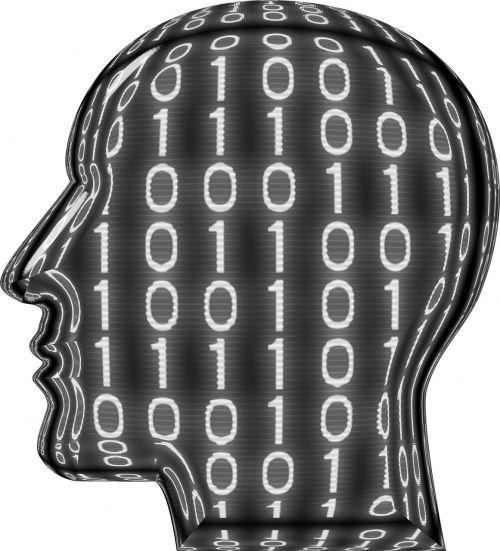 head digital dream