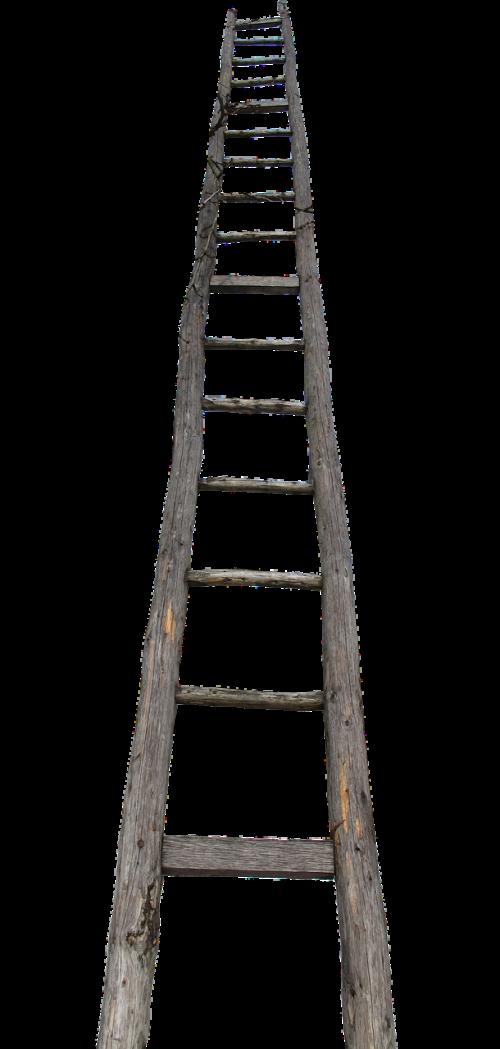 head wooden ladder ladder