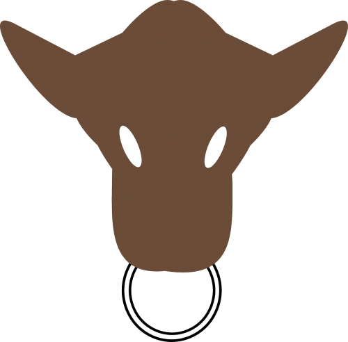 head silhouette face