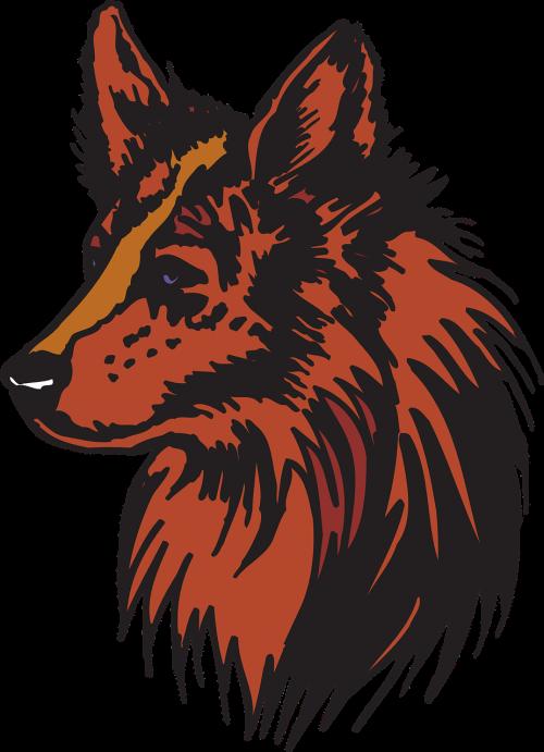 head red animal