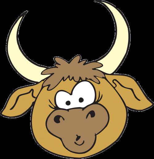 head bull horns