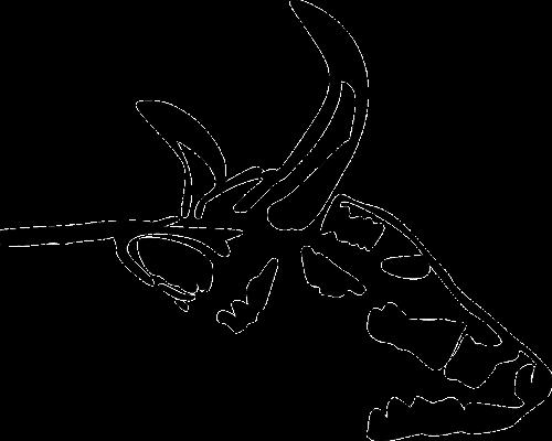 galva,veidas,karvė,gyvūnas,ūkis,ragai,žinduolis,ūkininkavimas,nemokama vektorinė grafika