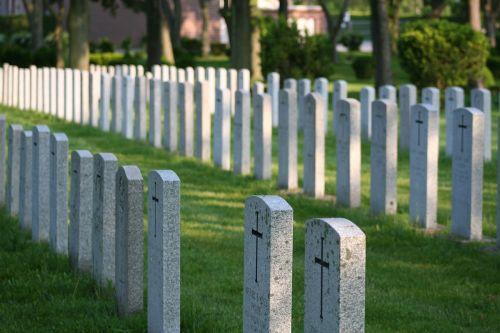 headstones rows graveyard