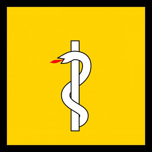 health flag snake