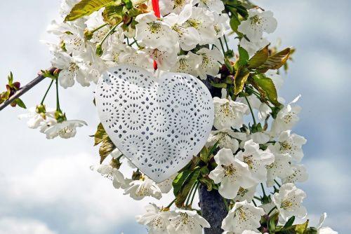 heart white love