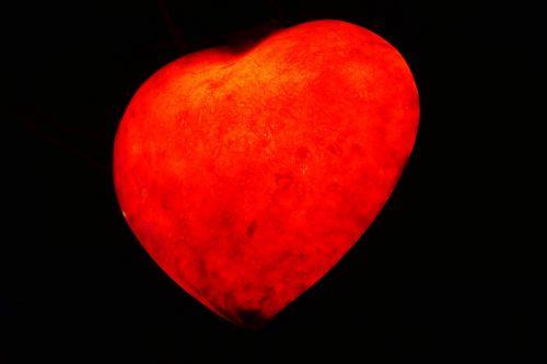 heart love the heart of