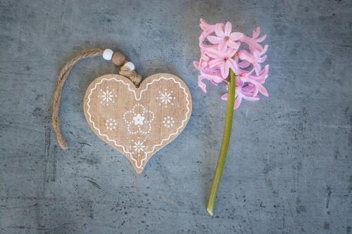 širdis,medinė širdis,meilė,simbolis,Sveiki,deko,Uždaryti,hiacintas,gėlė,rožinis,pavasario gėlė,kvepianti gėlė,rožinė gėlė,gėlės,aromatingas,natiurmortas