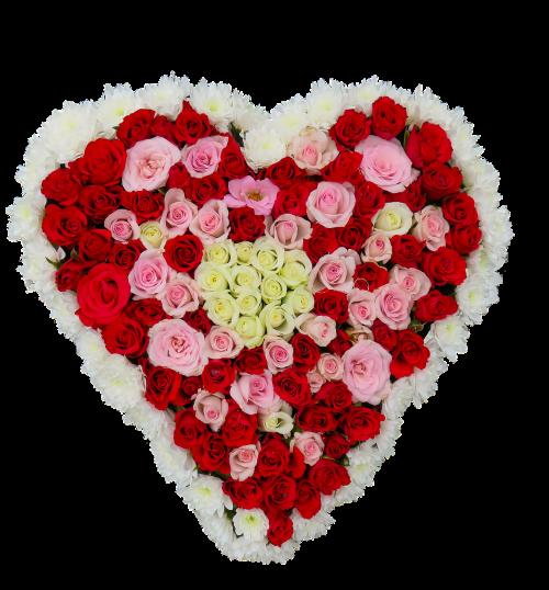 heart flowers roses