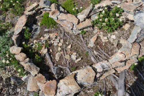 heart stone nature